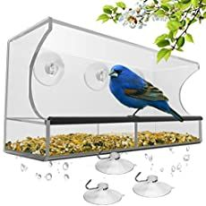 Window Bird Feeder with Strong Suction Cups and Seed Tray, Outdoor Birdfeeders for Wild Birds, Finch, Cardinal, and B. Best Bird Feeders, Homemade Bird Feeders, Diy Bird Feeder, Humming Bird Feeders, Squirrel Feeder, Easy Bird, Bird House Kits, How To Attract Birds, All Birds