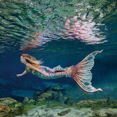 Merbella Studios Inc. Silicone tail on a Weeki Wachee Mermaid. Mermaid Cove, Mermaid Fairy, Real Mermaids, Mermaids And Mermen, Fantasy Creatures, Mythical Creatures, Weeki Wachee Mermaids, Sirens, Ocean Wave Painting