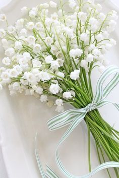 It is a French tradition to give Lily of the Valley on the first day of May…..
