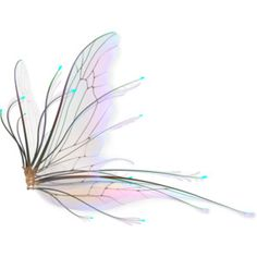 png_fairy_wings_2_by_naughtygirlgraphics-d3hqdxv.png