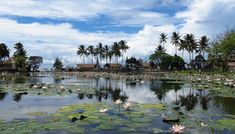 5---Panoramic-view-of-Lagoon---by-Daaynos