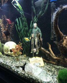 Rare Horror on Jason Voorhees at the bottom of aquarium! Aquarium Setup, Aquarium Design, Betta Fish Tank, Aquarium Fish Tank, Axolotl Tank, Fish Tank Themes, Terrarium Reptile, Fish Tank Terrarium, Fish Tank Design