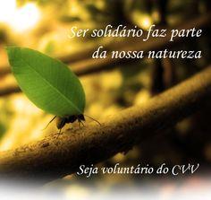 """Ser Solidário faz parte da natureza do ser humano - O Programa CVV promove Cursos gratuitos de Seleção para Novos Voluntários POSTO CVV BARRA FUNDA 29 e 30/01/11 das 13h às 18h Av Gal. Olímpio da Silveira, 327, sl 14, Santa Cecília, São Paulo, SP Próx ao metrô Marechal Deodoro 11-3825-4111 ou 141 barrafunda@cvv.org.br POSTO...<br /><a class=""""more-link"""" href=""""https://catracalivre.com.br/geral/agenda/barato/cvv-oportunidade-voluntariado/"""">Continue lendo »</a>"""