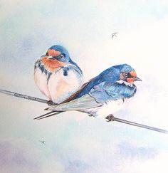 Original Watercolour 'Swallows' Elaine Hush