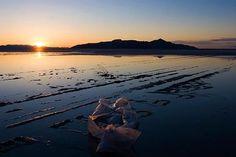 California Legislature Bans Plastic Bags Statewide | Newsroom