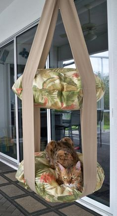 Every kitty needs this - Tropical Print Outdoor Double Kitty Cloud, Hanging Cat Bed. Outdoor Cats, Indoor Outdoor, Cat House Outdoor, Cat House Diy, Cat Climbing, Cat Room, Pet Furniture, Pet Beds, Chinchilla