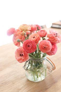 De belles renoncules et un simple bocal à conserves pour un résultat gourmand et romantique #Flowers