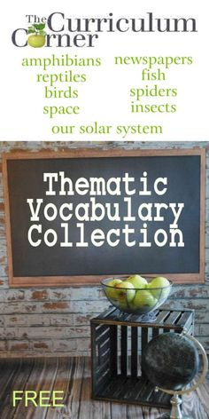 Thematic Vocabulary Collection from The Curriculum Corner | Includes 9 sets with word cards, definition sheets, matching & more | space | insects | spiders | amphibians | reptiles | birds | solar system | newspapers | fish