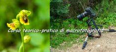 Il corso di macrofotografia è aperto ad appassionati di fotografia, escursionisti, amanti della natura e tutti coloro che desiderano scoprire e approfondire il mondo della fotografia macro e ravvicinata (close-up), in particolare della macrofotografia di fiori e insetti.  #CorsiCagliari #CorsoFotografia