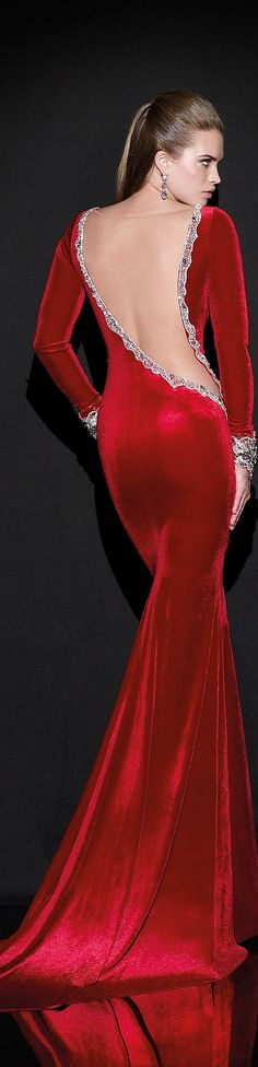 Tarik Ediz 2015 Collection...DANG, this is an incredibly elegant yet sexy dress!!!