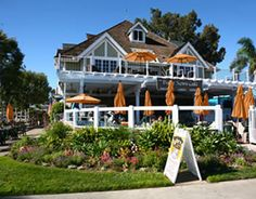 Daily News Cafe: Carlsbad, California (best chocolate chip muffins to take to the beach!)