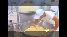 VIDEO: Mozzarella di Bufala Campana Dop: fasi di lavorazione