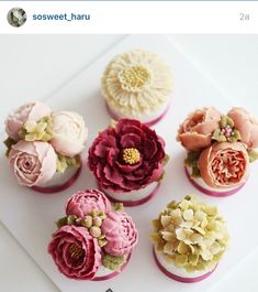 Shared by Where YoUth Rise Beautiful Cupcakes, Gorgeous Cakes, Pretty Cakes, Amazing Cakes, Cupcakes Flores, Floral Cupcakes, Fancy Cakes, Mini Cakes, Cupcake Cakes