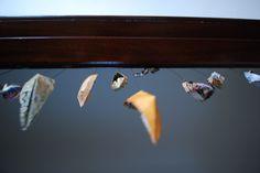 origami dream boats
