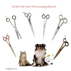 Roseline Shears The Only Shear For Pet Grooming Needs. Body Toolz has the largest selection of German Roseline Shears