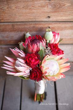 Kim du Toit: Ben & Belinda Gass | Wedding | Cassia, Nitida - Protea Kings & Duchess