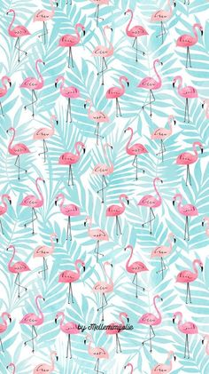 #iphonewallpaper #wallpaper #phonewallpaper #instagram #pink #iphone #fashion #flamingoparty
