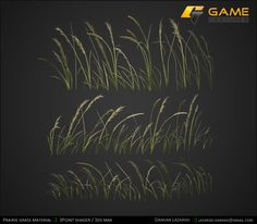 Green Prairie grass texture by Damian Lazarski for http://www.gametextures.com