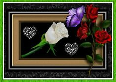 Thanks Single Rose, Do You Feel, Memorial Day, Butterflies, Insects, Thankful, Roses, Hearts, Gardens