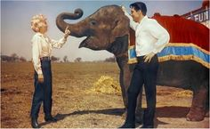 Barbara Stanwyck, Elvis Presley, and Elephant in ROUSTABOUT (1964) http://www.mildredsfatburgers.com/the-blog/wheels-on-his-heels-and-all-that