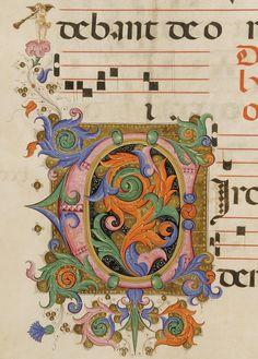 Iniziale C autore: Filippo di Matteo Torelli tecnica: tempera e pennello