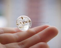 Dandelion necklace Real Dandelion jewelry Make a wish Mother Day Gifts, Gifts For Mom, Great Gifts, Dandelion Necklace, Taraxacum Officinale, Wish Gifts, Dandelion Wish, Clear Resin, Stainless Steel Chain