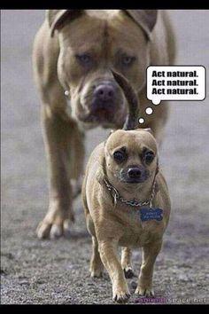 Act natural!!