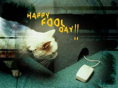 Today is April Fools Day, say happy to this special day. Let practice and play on friends, family members, and bitter enemies. Make the day meaningful and funny! http://ddquotes.com/funny-happy-april-fools-day-pictures/