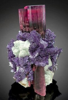 Multi-colored Tourmaline crystal with white Cleavelandite and some purple lepidolit.