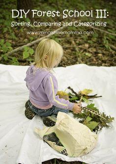 DIY Forest School III: Sorting, Comparing and Categorizing. Rain or Shine Mamma
