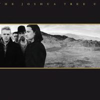 Listen to The Joshua Tree (Deluxe Edition) [Remastered] by U2 on @AppleMusic. Pop Albums, Best Albums, Music Albums, Greatest Albums, Classic Album Covers, Cool Album Covers, U2 Music, Rock Music, Top 80s Songs