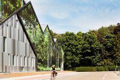 Dilbeek - Academie MWD, architectural illusion by carlos arroyo