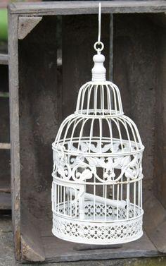 1000 id es sur d coration de cage oiseaux sur pinterest - Petite cage oiseau deco ...
