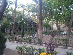 Damasco Madras