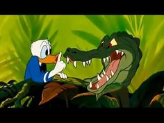 Donald Duck & Chip and Dale, Mickey Mouse, Pluto - Disney Movies Cartoon - YouTube
