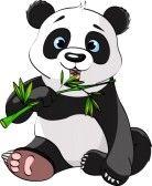 Panda baby sitting et grignotant sur Bambou