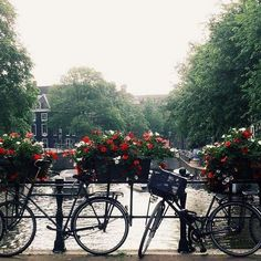 Amsterdam is truly a #CityBikes by @madalenambanha  This amazing morning picture was was taken in #Amsterdam and Madalena challenged @annajn7 @martadalmau7 and @arianavelosofonseca to taken their own #CityBikes photo! Are you in?