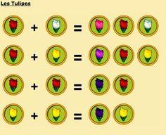Guide Creation de fleur hybride : les tulipes