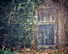 The Secret Door. Perfect for photoshoots of all kinds!