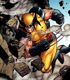 ✭ Wolverine