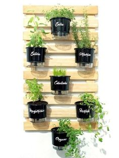 indoor garden With the increase in organic gardening many have been planting their own fruits and veggies. Here are some herb garden planter ideas that you can do yourself.