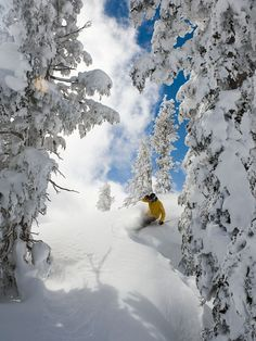 Top 10 places to ski like an Olympian: Skiing Squaw Valley. Photo by Squaw Valley