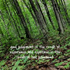 good judgement is the result of experience and experince is the result of bad judgement Find Quotes, Messages, Memes, Words, Pictures, Photos, Meme, Resim, Clip Art