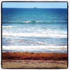Veracruz rinconcito donde hacen sus nidos las olas del mar...
