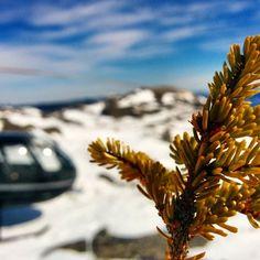 Au sommet de #charlevoix ... #moncharlevoix by helicharlevoix