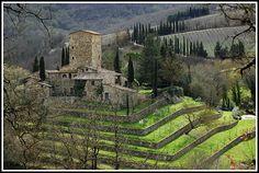 La Torrace (toscana)