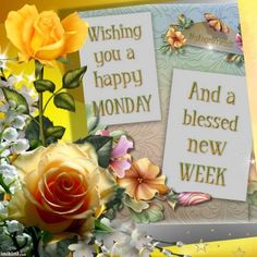 Wishing you a happy Monday and a blessed new week monday good morning i hate mondays monday morning monday greeting monday blessings monday comment Monday Morning Quotes, Happy Tuesday Quotes, Morning Greetings Quotes, Monday Quotes, Morning Messages, Happy Monday Gif, Daily Quotes, Afternoon Quotes, Monday Monday