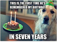Dog Problems, this is the first time hes remembered my birthday in seven years