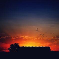. . . #landscape #landscapelovers #sky #nature #naturelovers #nationalgeographic #sunset #sunrise #sunshine #silhouette #landscapehunter #landscape_captures #birds #sunset_vision #sunsetvision #sunsetlovers #naturalbeauty #naturephotography #skyporn #outdoors #lonelyplanet #earthpix #welivetoexplore #earthfocus