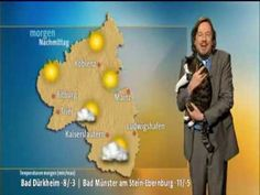 Cat interrupts German weather broadcast and demands cuddles! The video is cute. Apparently it is a studio cat.